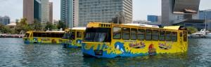 اتوبوس شگفت انگیز دبی ِdubai bus