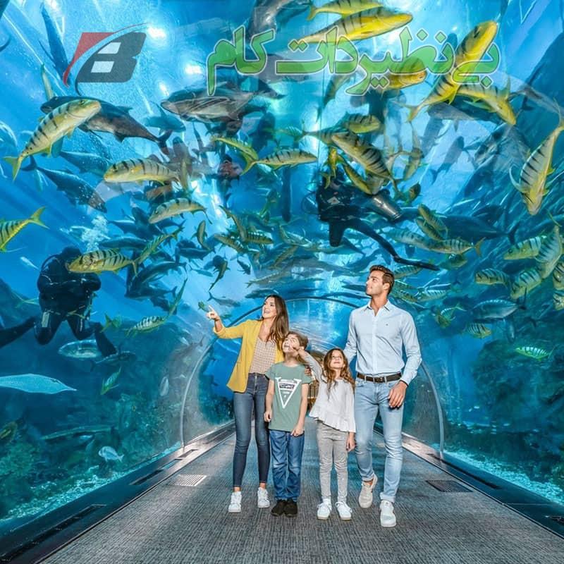 بازدید از تونل آکواریوم دبی